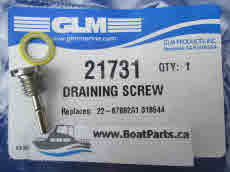 21731 Draining Screw