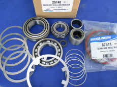 25140 Gearcase seal bearing kit