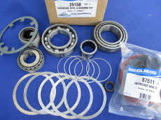 25150 Gearcase seal bearing kit